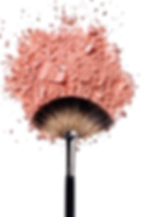 brush-pic.png