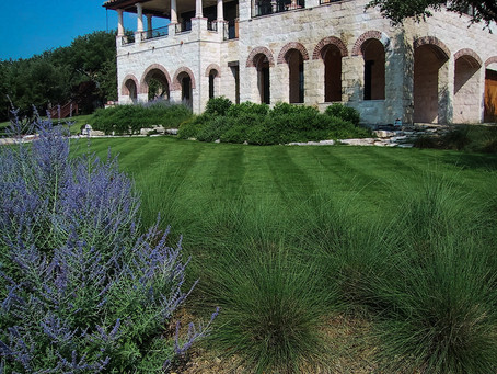 Springtime Tips on How to Help your Lawn Wake Up!