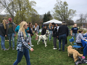 UNH Animal Welfare Alliance Pet Fair