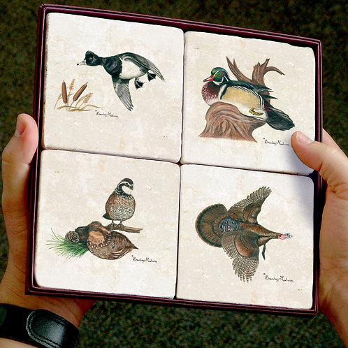 Birds, Coasters (Set of 4)