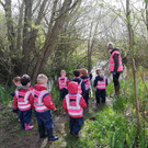 Group on forest walk