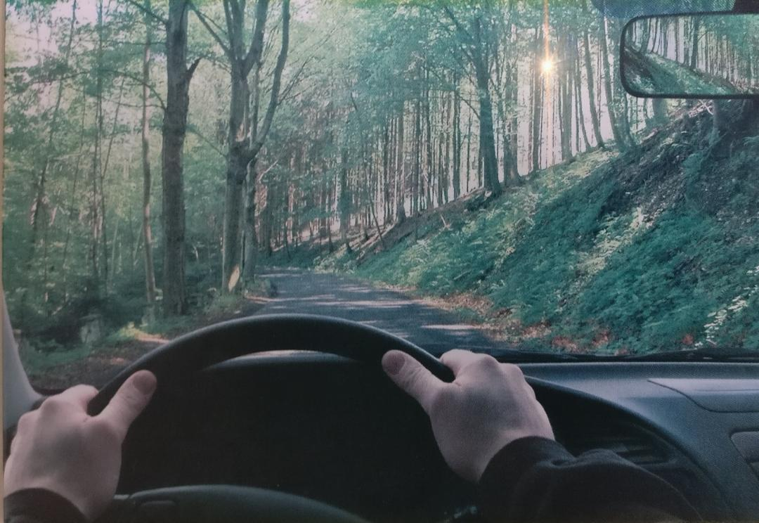 no glare while driving, polarized lenses