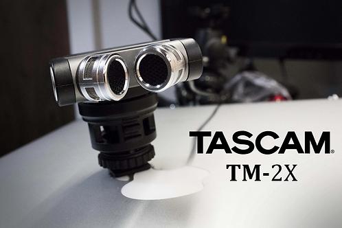 Micrófono Estéreo Tascam Tm-2x