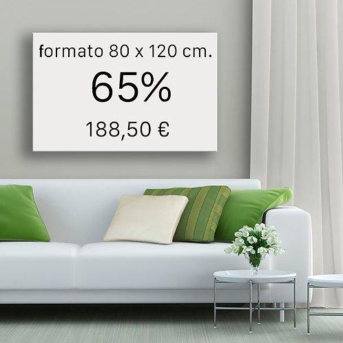 65% FORMATO 80x120 cm