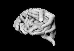 cervell 2 eureka.jpg