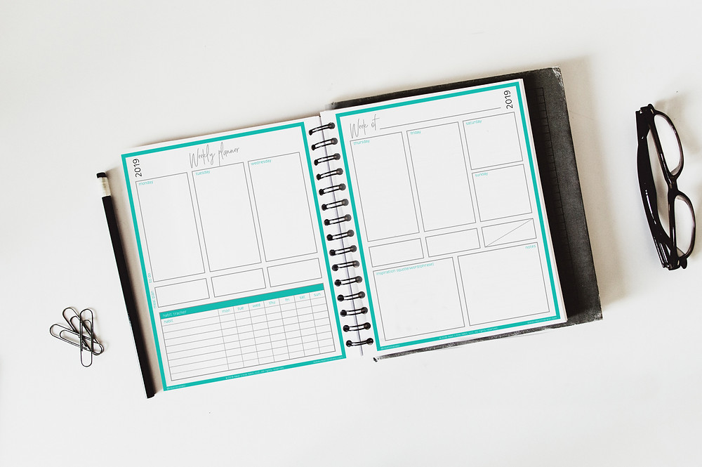 Weekly Success Planner | Neat Little Nest