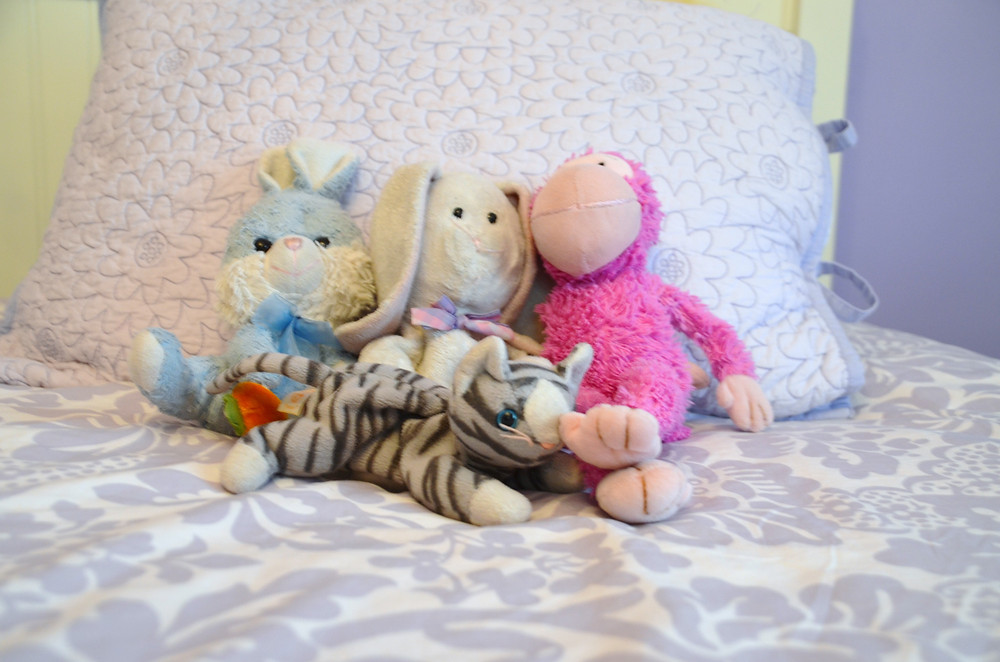 Neat Little Nest: Organizing Stuffed Animals