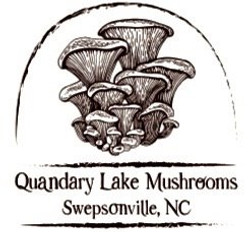 Quandary Lake Mushrooms