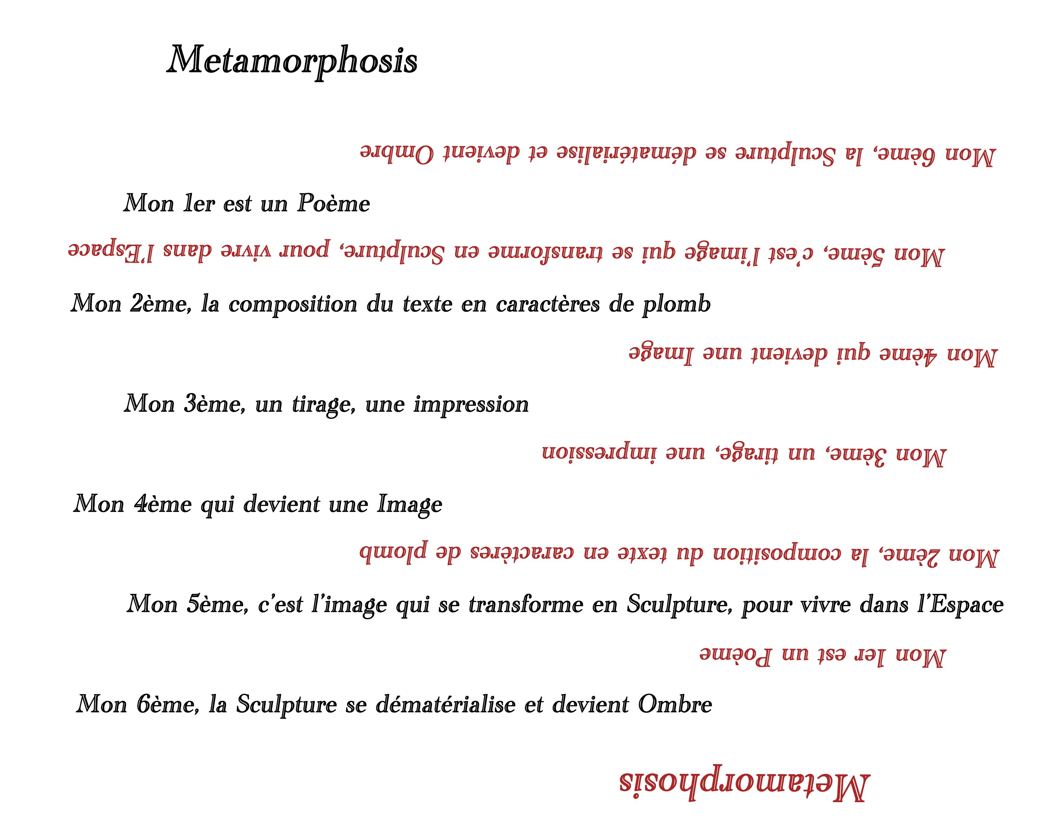 Metamorphosis - Barbara Debard
