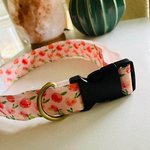 Peache's Collar