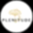 Logo_Plenitude(v3).png