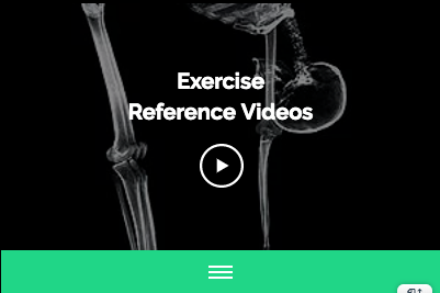exercise reference videos.png