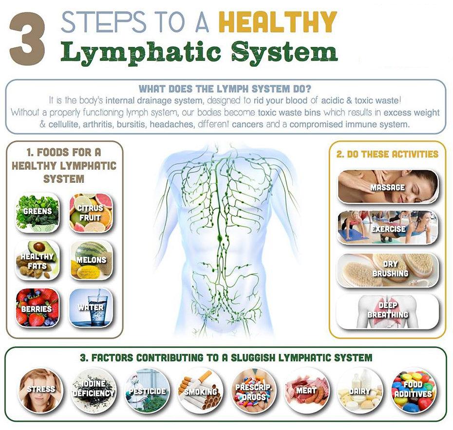 lymphatic-system1.jpg