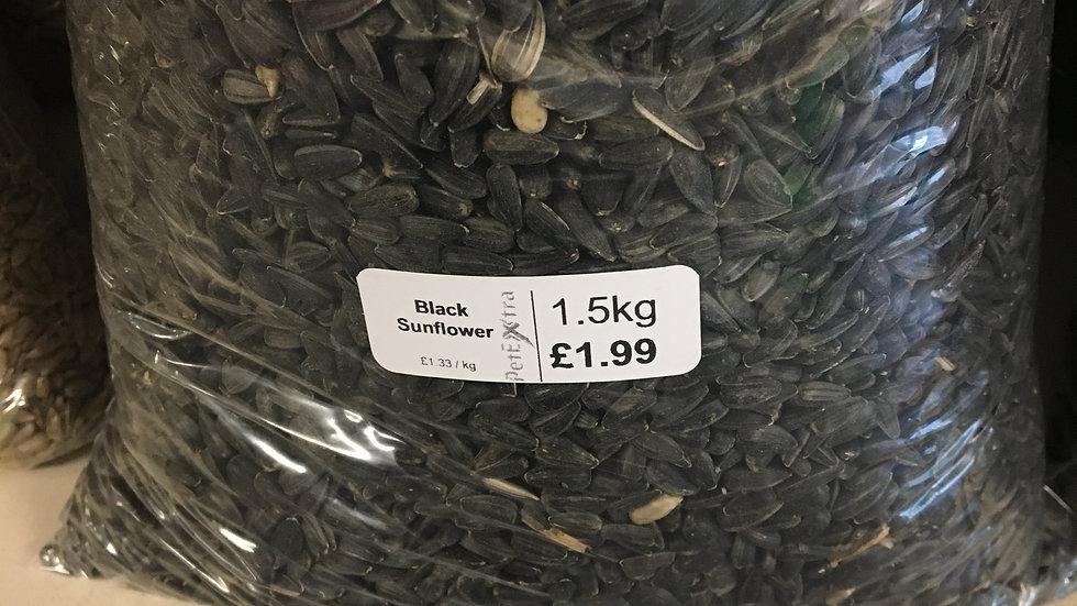 Black Sunflower 15kg