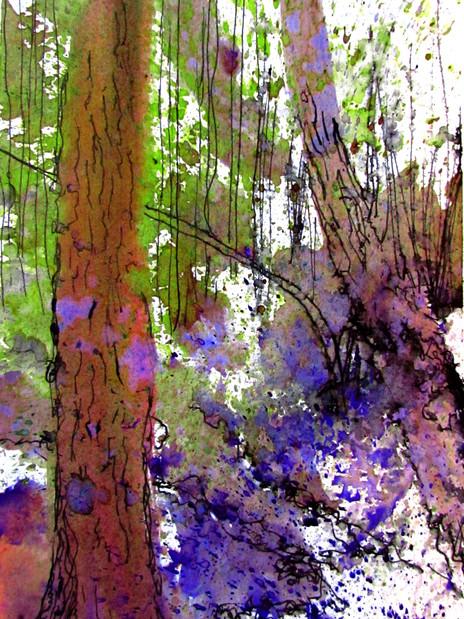 Woodlands 2.jpg