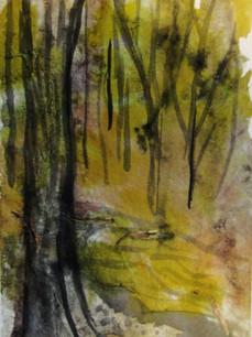 Woodlands 21.jpg