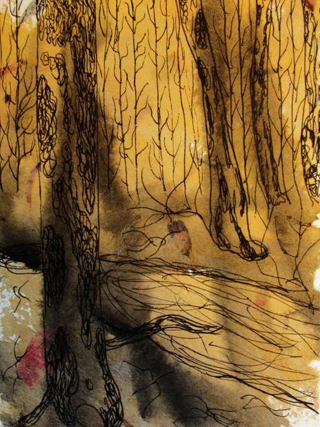 Woodlands 24.jpg