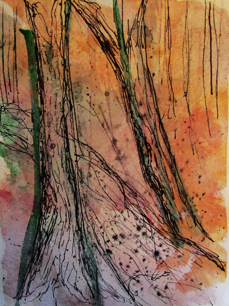 Woodlands 13.jpg