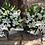 Thumbnail: Custom Sympathy Arrangement for Olsens Funerals