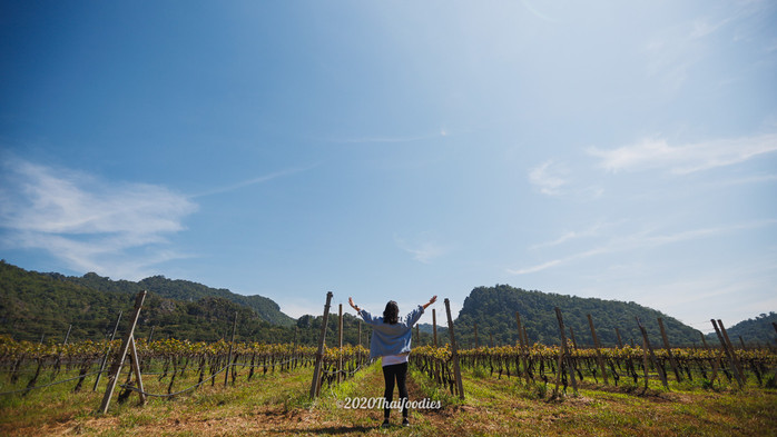 Experience a relaxing trip and peace of mind at the GranMonte Vineyard and Winery in Khaoyai