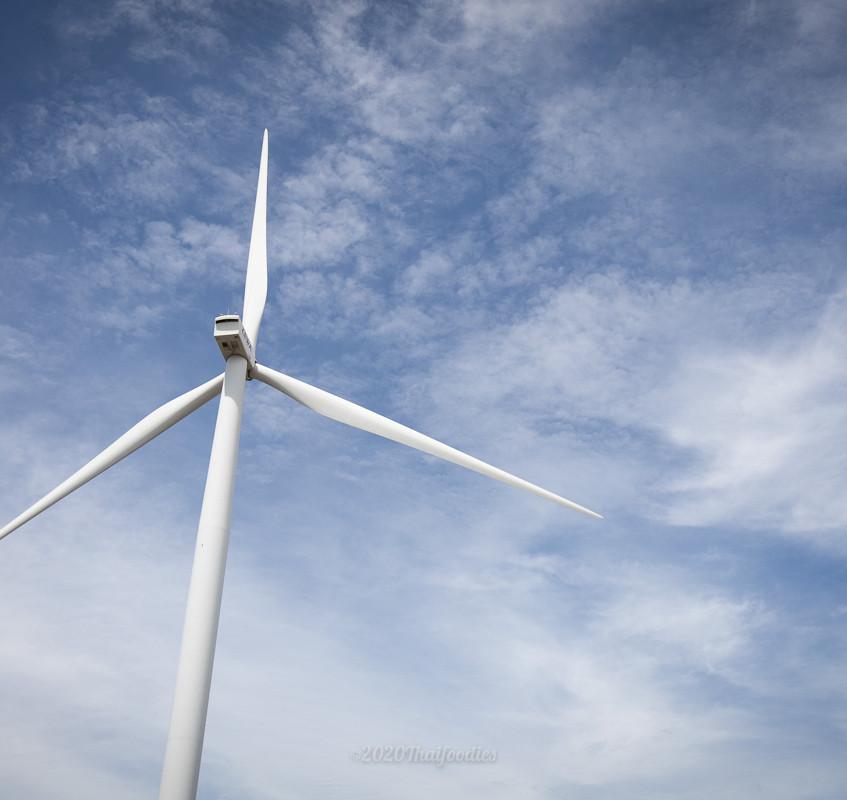 2020 Windmills 3