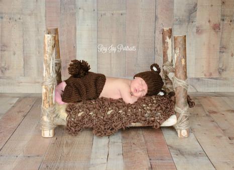 newborn bear