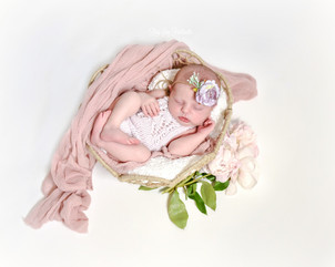 newborn with peonies.jpg