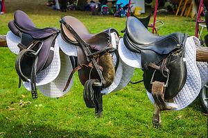 saddle-3647014_1920.jpg