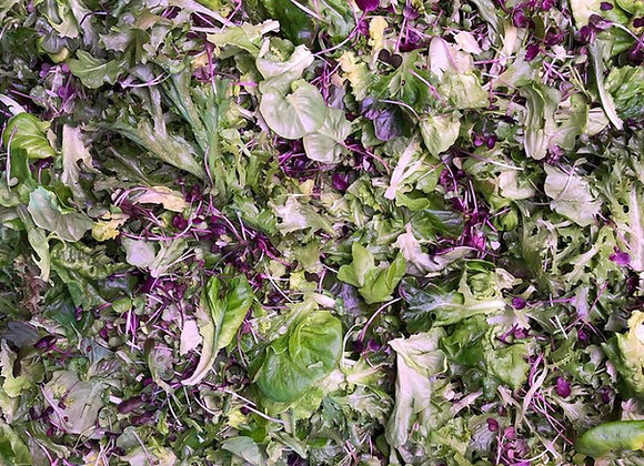 Salad Lovers CSA Share