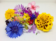 Assortion of Edible Flowers