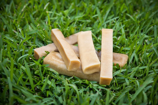 Assorted Chews on the grass