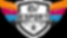 LDV_Esport_logo_2018.png