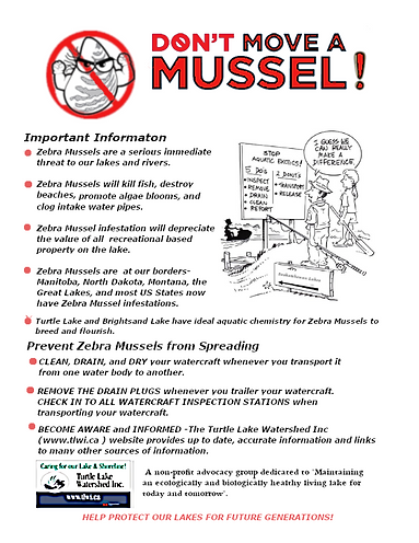 TLWI MUSSEL2.png