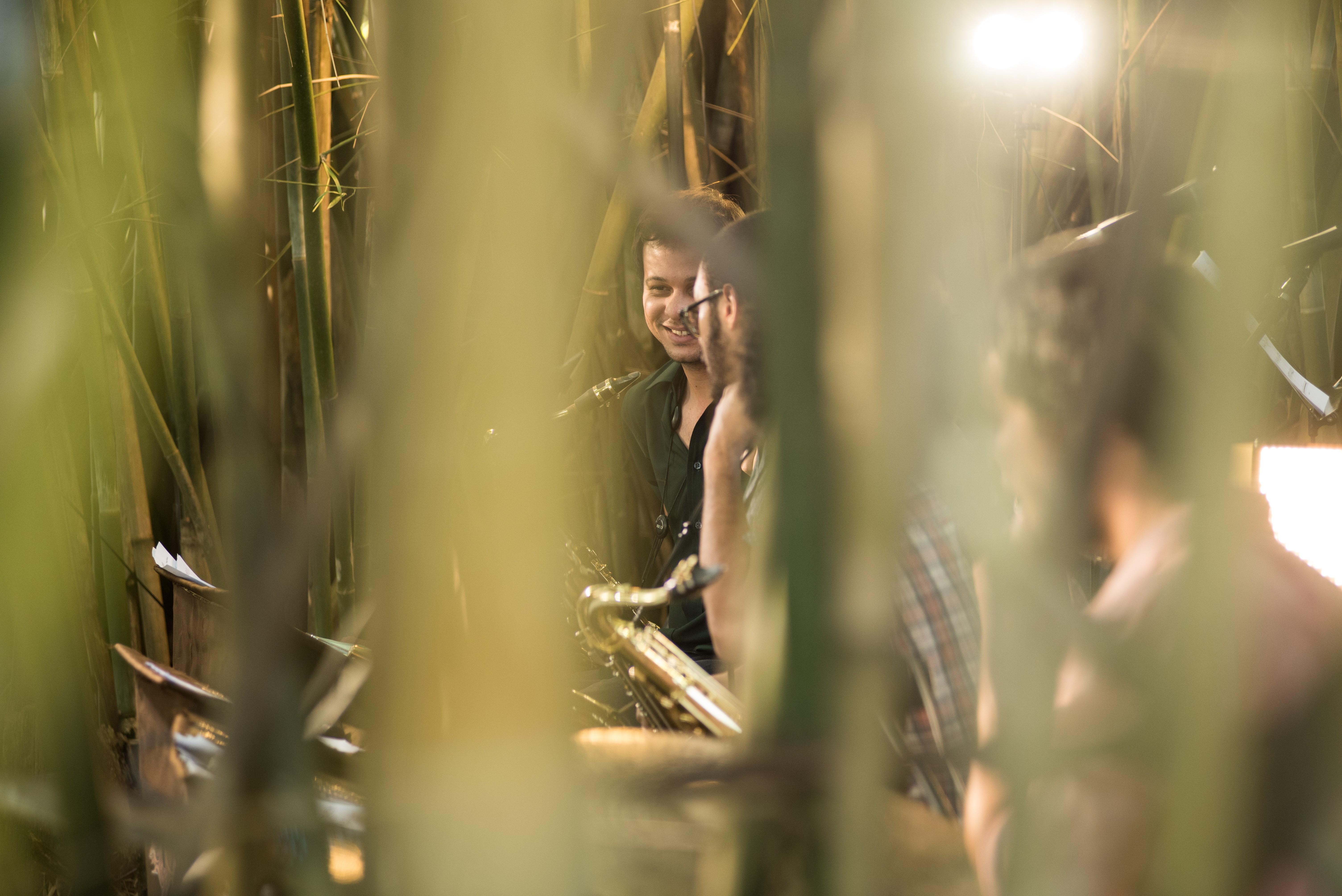 Entre Bambus