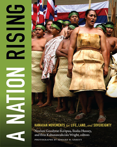 A Nation Rising cover high res.jpg