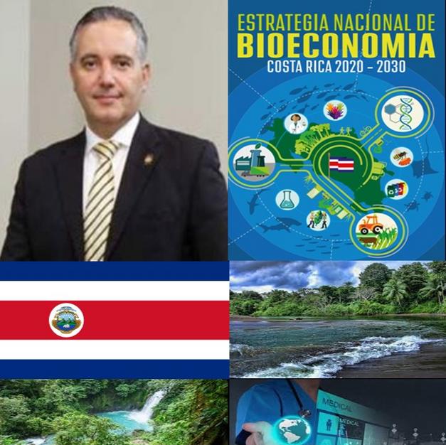 Amb Dr Fernando Llorca Castro