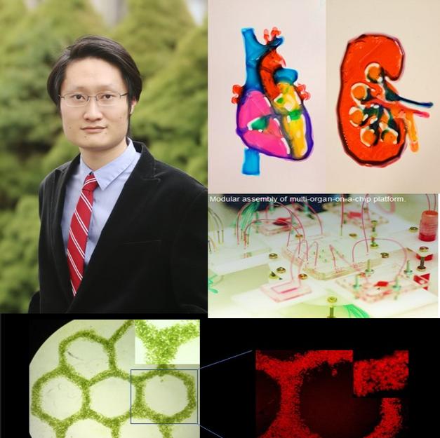 Dr. Yu Shrike Zhang