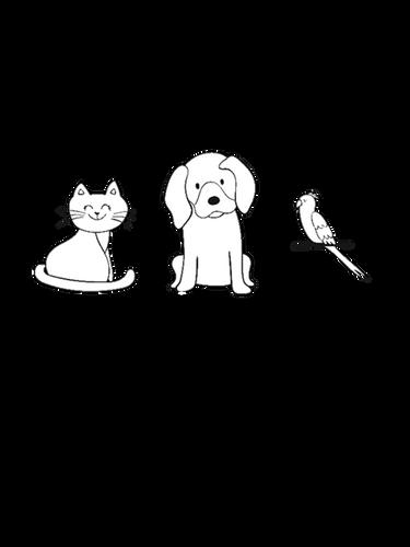 Wendy Collins Pet Sitting LLC