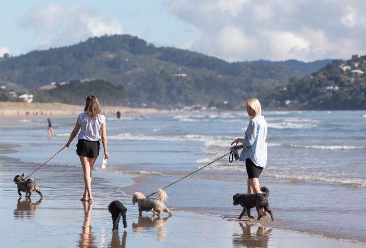 Paunaui Beach with the team