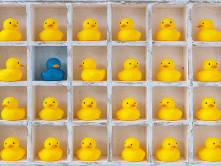 How to grow your customer base and stand out from the crowd