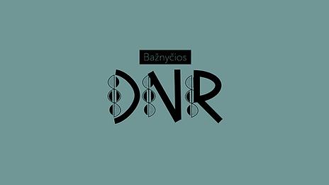Bažnyčios DNR cover.png