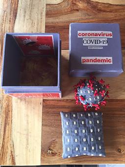 Pandemic in a Box by Roberta Lutgens. Handmade coronavirus box with fabric virus and pillow.