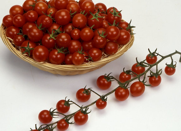 Tomato Red Berry