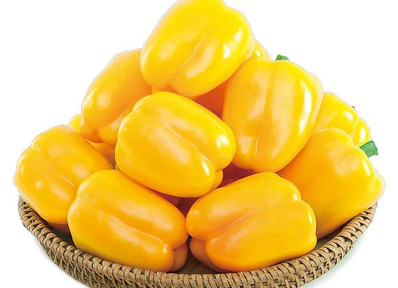 Sweet Peppers Golden Star
