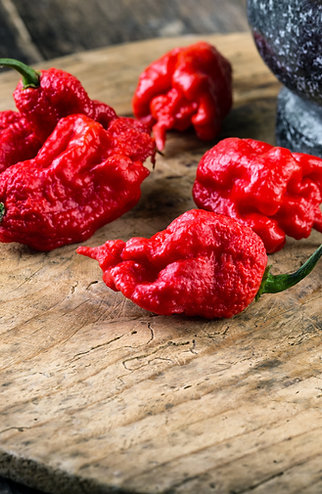 Hot Pepper Carolina Reaper
