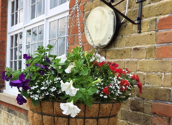 Professional Wire Hanging Baskets