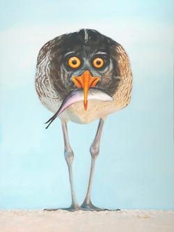 April Fool's Bird