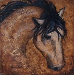 Horse of My Heart