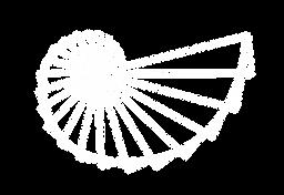 Logo NECS fondo transparente-04.png