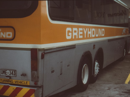 Love is Like a Greyhound Bus: How to Talk to a Divorced Person
